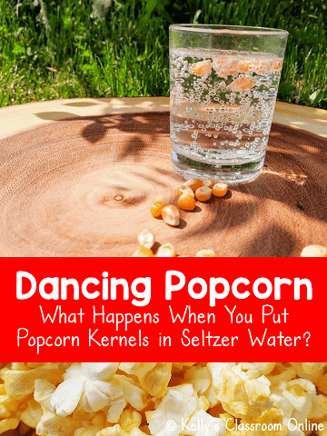 A glass of seltzer water is sitting on a tree stump.  There are popcorn kernels floating in the glass.  #kellysclassroomonline