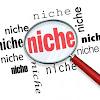 Cara Mudah Memilih Niche Blog Paling Sempurna Buat Blogger Pemula -