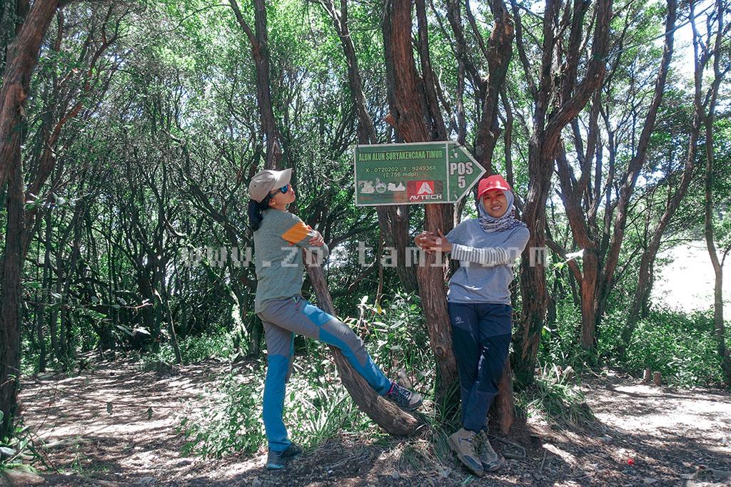 Info Pendakian Gunung Gede Pangrango Terbaru 2020
