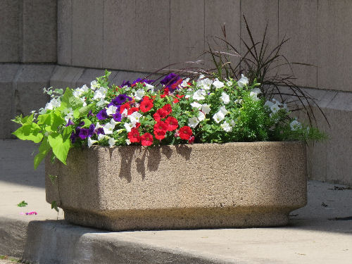 urban planter
