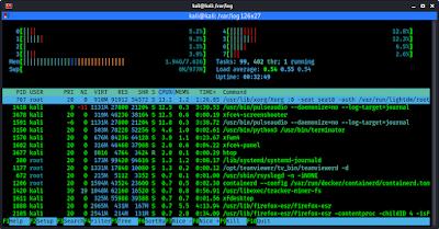 htop on Kali Linux