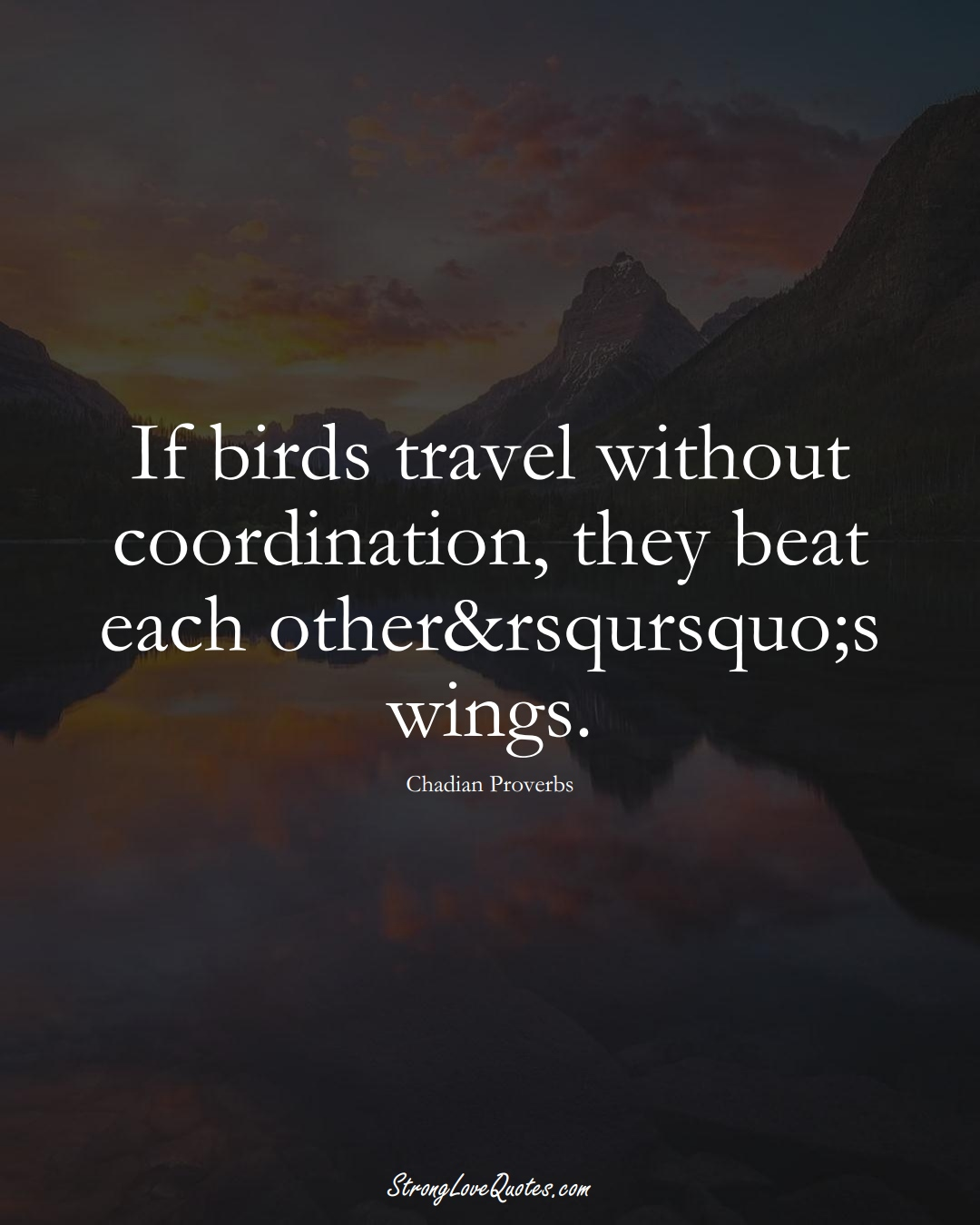 If birds travel without coordination, they beat each other&rsqursquo;s wings. (Chadian Sayings);  #AfricanSayings