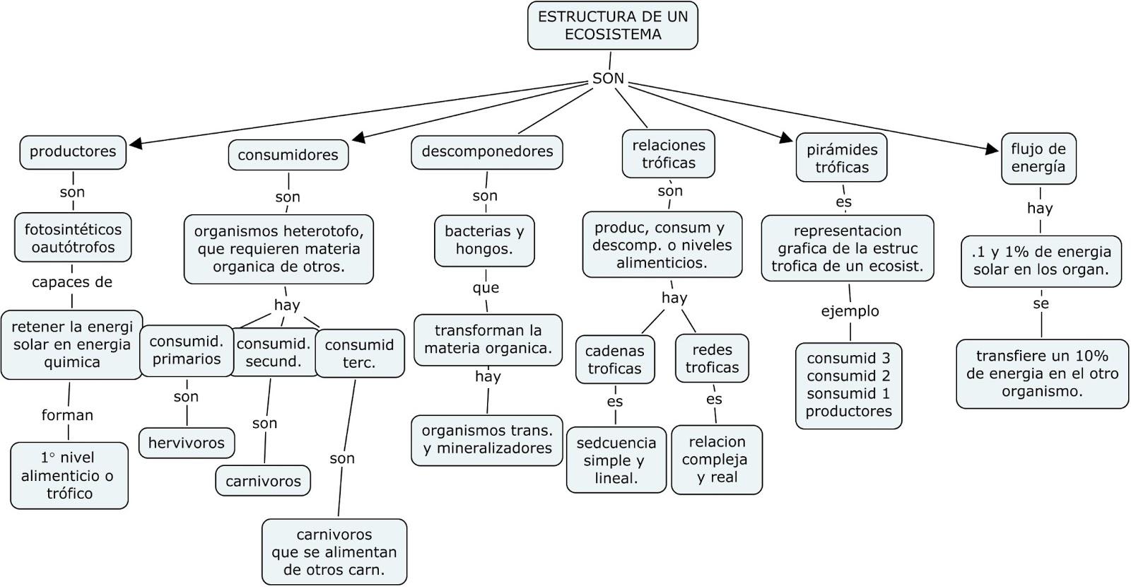 Ciencias Naturales 2 2 Mapas Conceptuales Ciclos De La