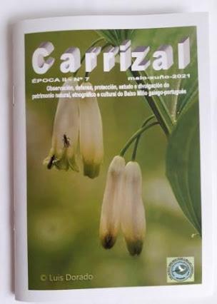 """ANABAM PUBLICOU UN NOVO NÚMERO DE """"CARRIZAL"""""""