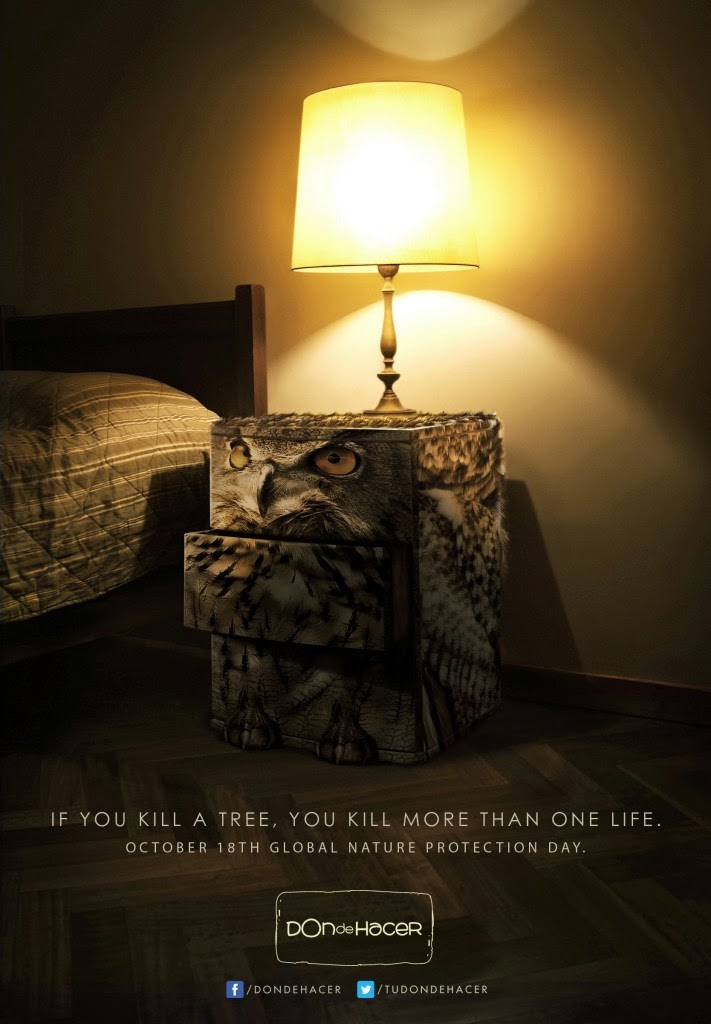 Campaña contra la tala de arboles