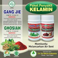 Jual Obat Sipilis De Nature Indonesia Terjamin Asli dan Terpercaya