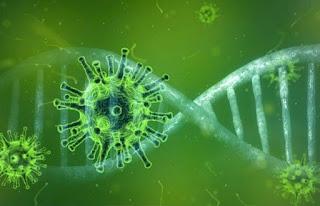 कोरोना व्हायरस देशभरात 396 वररुग्ण