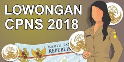 Kuala Kapuas Akan Buka Rekrutmen 700 CPNS Tahun 2018