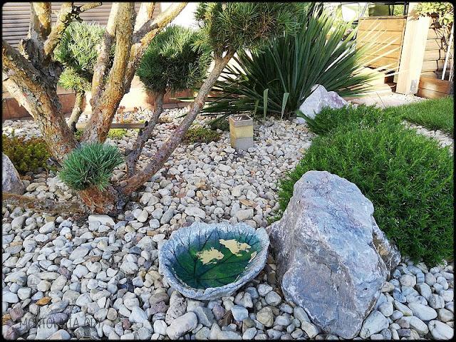 Jak zrobić betonowe poidełko dla ptaków?