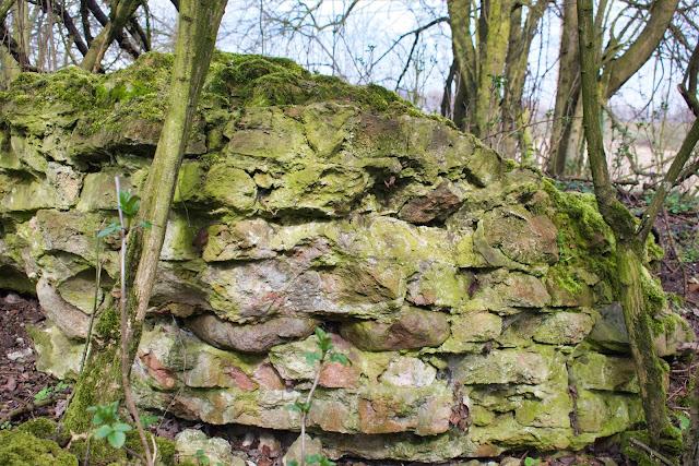 Zamek Krzyżacki w Małej Nieszawce