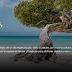 ¡Bon dia, Aruba les da la bienvenida a su isla virtual!