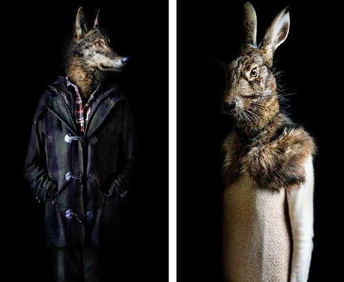 04-Wolf-and-Hare-Miguel-Vallinas-Segundas-Pieles-Second-Skins-Smartly-Dressed-Animals-www-designstack-co