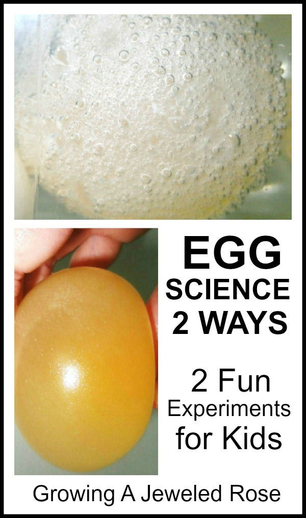 Two amazing egg experiments for Kids- these are so cool!