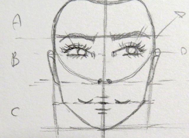 Dibujo de las orejas en la segunda parte de la división inicial