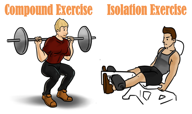 Compound Exercises vs Isolation Exercises