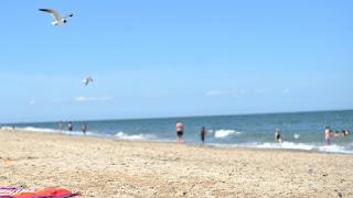 نيويورك ونيوجيرسي وكونيتيكت وديلاوير تفتح الشواطئ ليوم الذكرى مع قيود