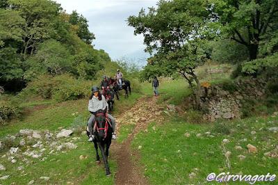 escursioni gargano trekking cavallo