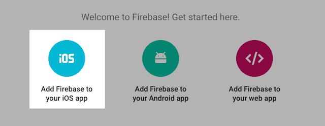 'Add Firebase to your iOS app'.