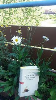 Das Cover zeigt eine sterbende Biene. Das Buch steht in einer Blumenschale