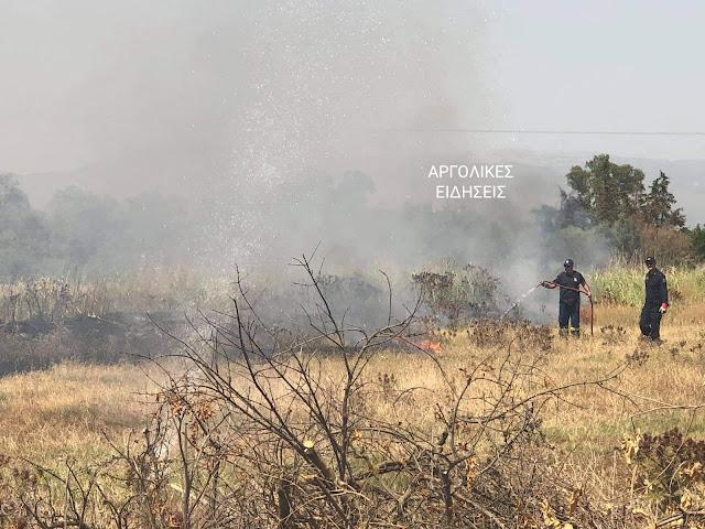 Αργολίδα: Μικρής έκτασης φωτιά στο Λάλουκα Άργους