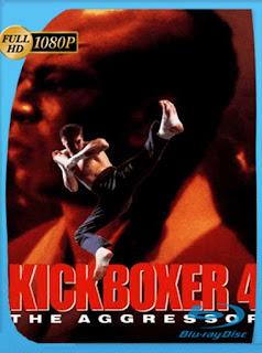 Kickboxer 4 [1994] HD [1080p] Latino [GoogleDrive] SilvestreHD