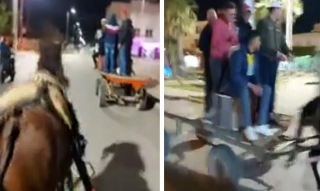 """يحدث في تونس: بالفيديو ... """"تونسيون يتنقلون للمقاهي عبر"""" البِغَال""""و"""" الكريطة""""..."""
