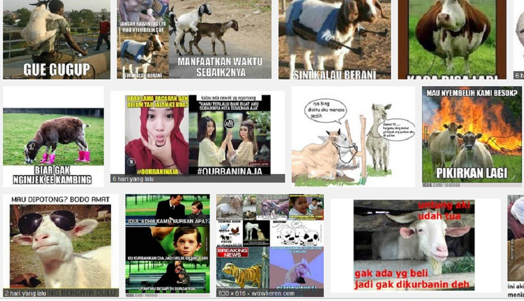 Bagi Yang Pajang Meme Meme Lucu Idul Adha Renungkanlah