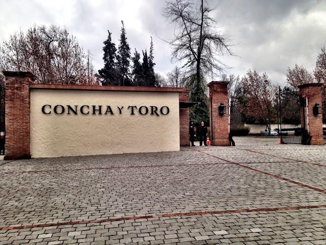 Visita Concha y Toro