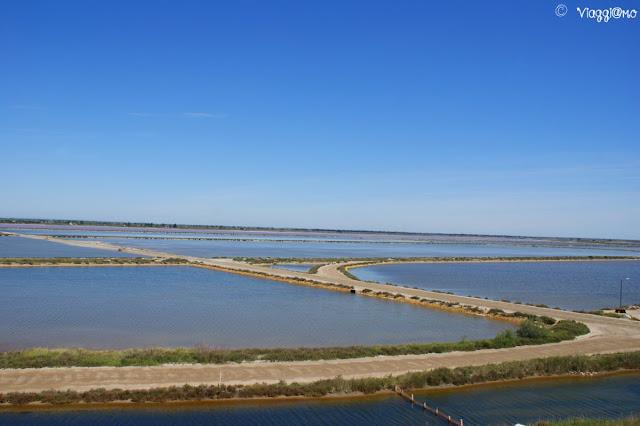 Il panorama sulle Saline di Aigues Mortes