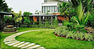 Galeri Taman - Tukang Taman Surabaya 57