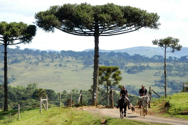 Lages é a Capital do Turismo Rural