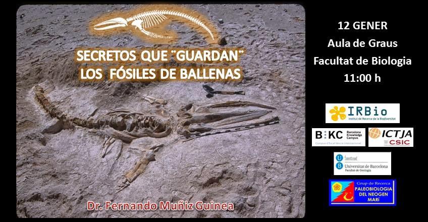 Paleobiologia del Neogen Marí