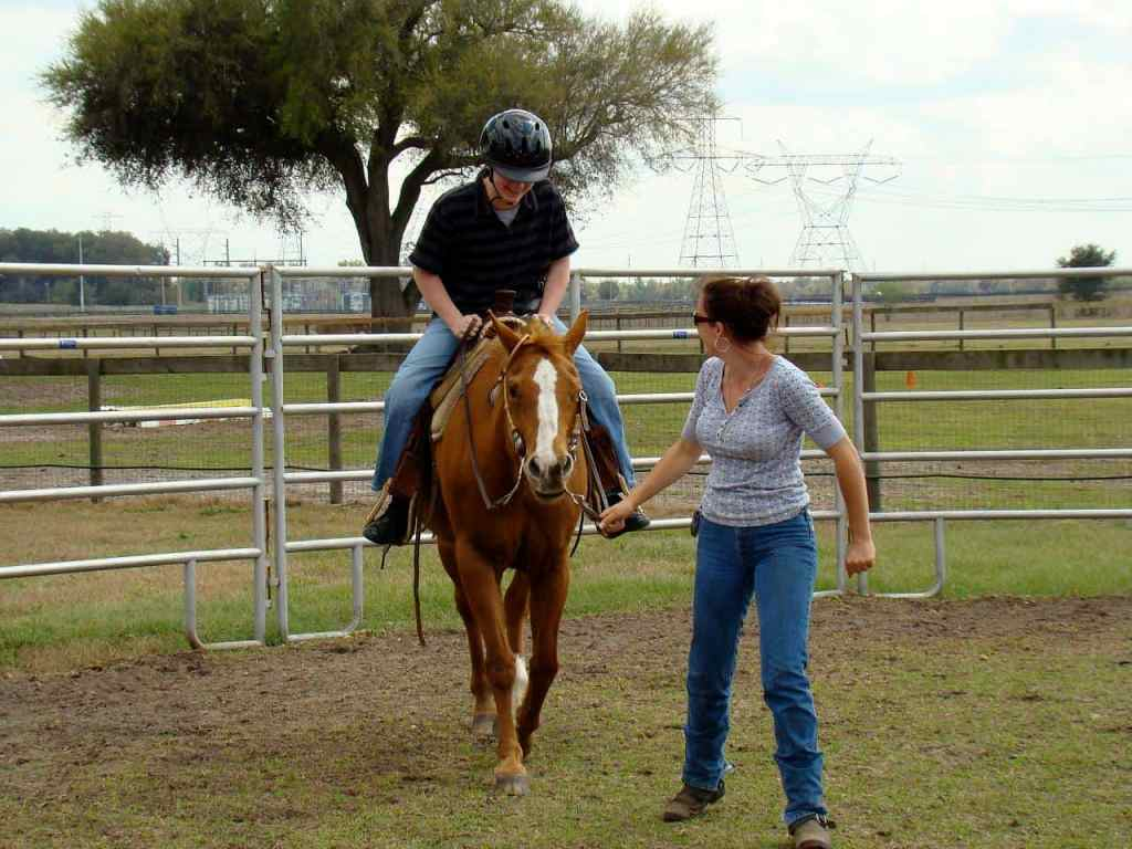 4 Major Factors to Look at When Seeking Horse Riding Lessons