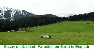 Essay on Kashmir Paradise on Earth in English