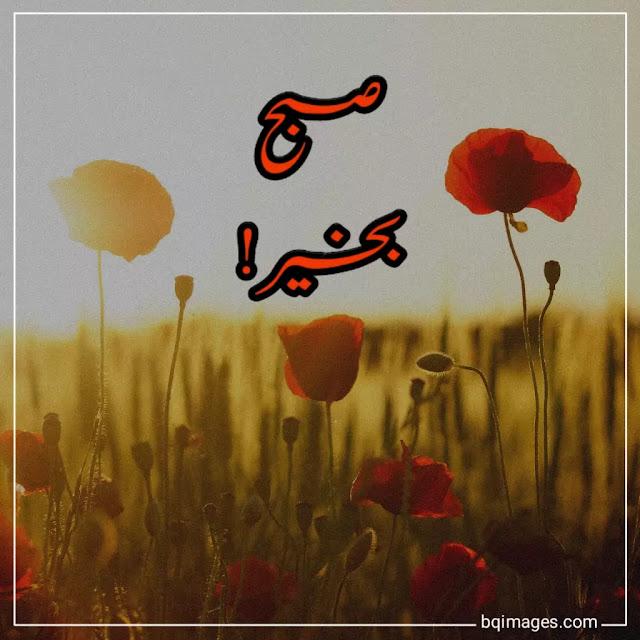 subah bakhair wishes in urdu