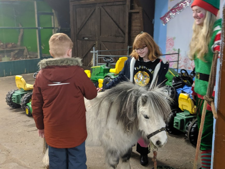Christmas & Santa at Whitehouse Farm - A Review - Christmas pony grooming
