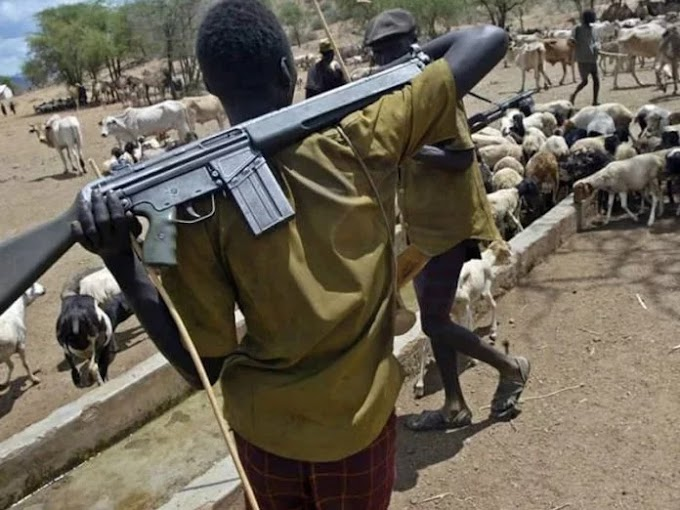 Herdsmen kill soldiers, kidnap two in Benue LG, Logo