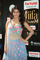 Amyra Dastur in Flower Print Choli Transparent Chunni at IIFA Utsavam Awards 40.JPG