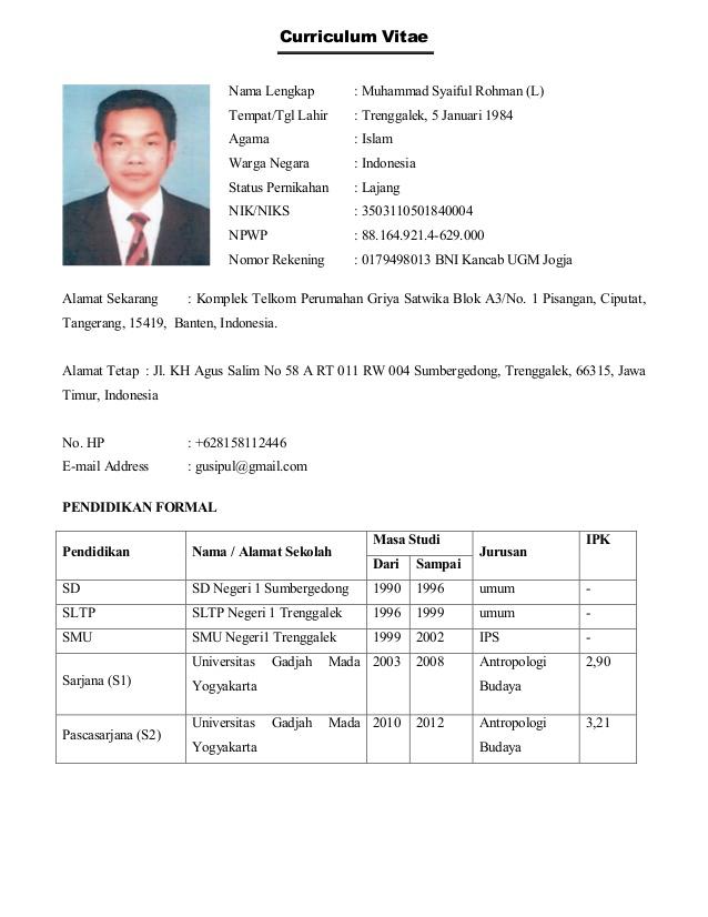 curriculum vitae english pdf resume pdf download free download professional resume format freshers cv format pdf - Resume Pdf Format