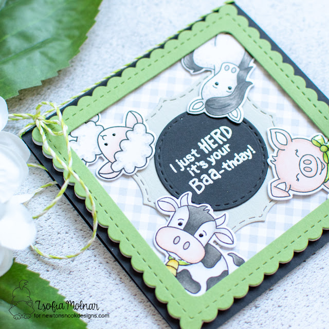 Herd it's your Baa-thday Card by Zsofia Molnar | Oink, Baa, Neigh, and Moo Stamp Sets and Frames Squared Die Set by Newton's Nook Designs #newtonsnook
