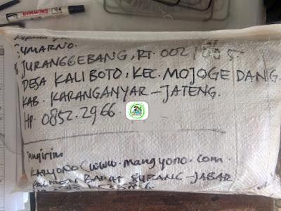 Benih padi yang dibeli   SUMARNO Karanganyar, Jateng.  (Setelah packing karung ).