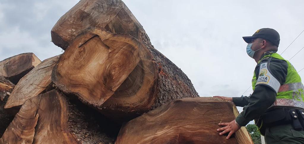 https://www.notasrosas.com/ Polfa, Ejército y Dian incautan madera avaluada en más de 200 millones de pesos, en vías aledañas a Bosconia - Cesar