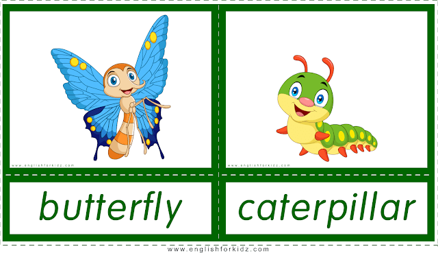 Animals and their babies -- butterfly - caterpillar -- printable flashcards