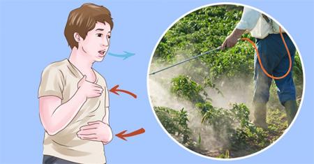 أنواع المبيدات الحشريه وتأثيرها على البشر