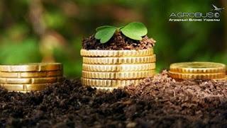 Как заработать деньги в селе... земля это деньги.
