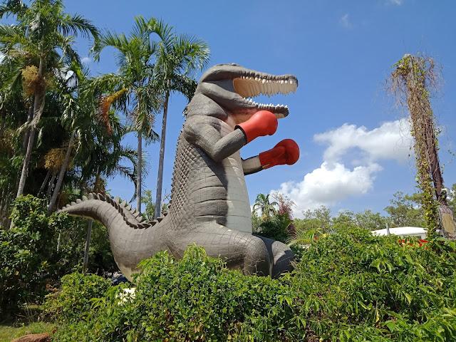 Humpty Doo   The Big Boxing Crocodile