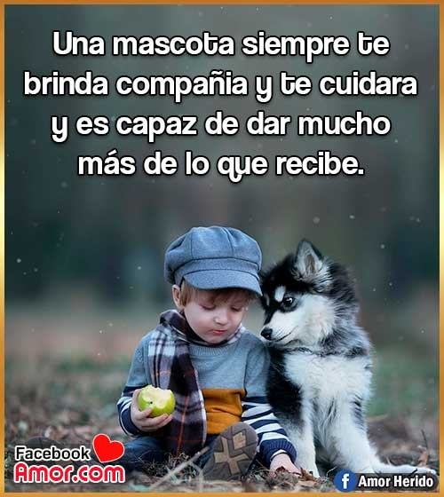 frases para animales