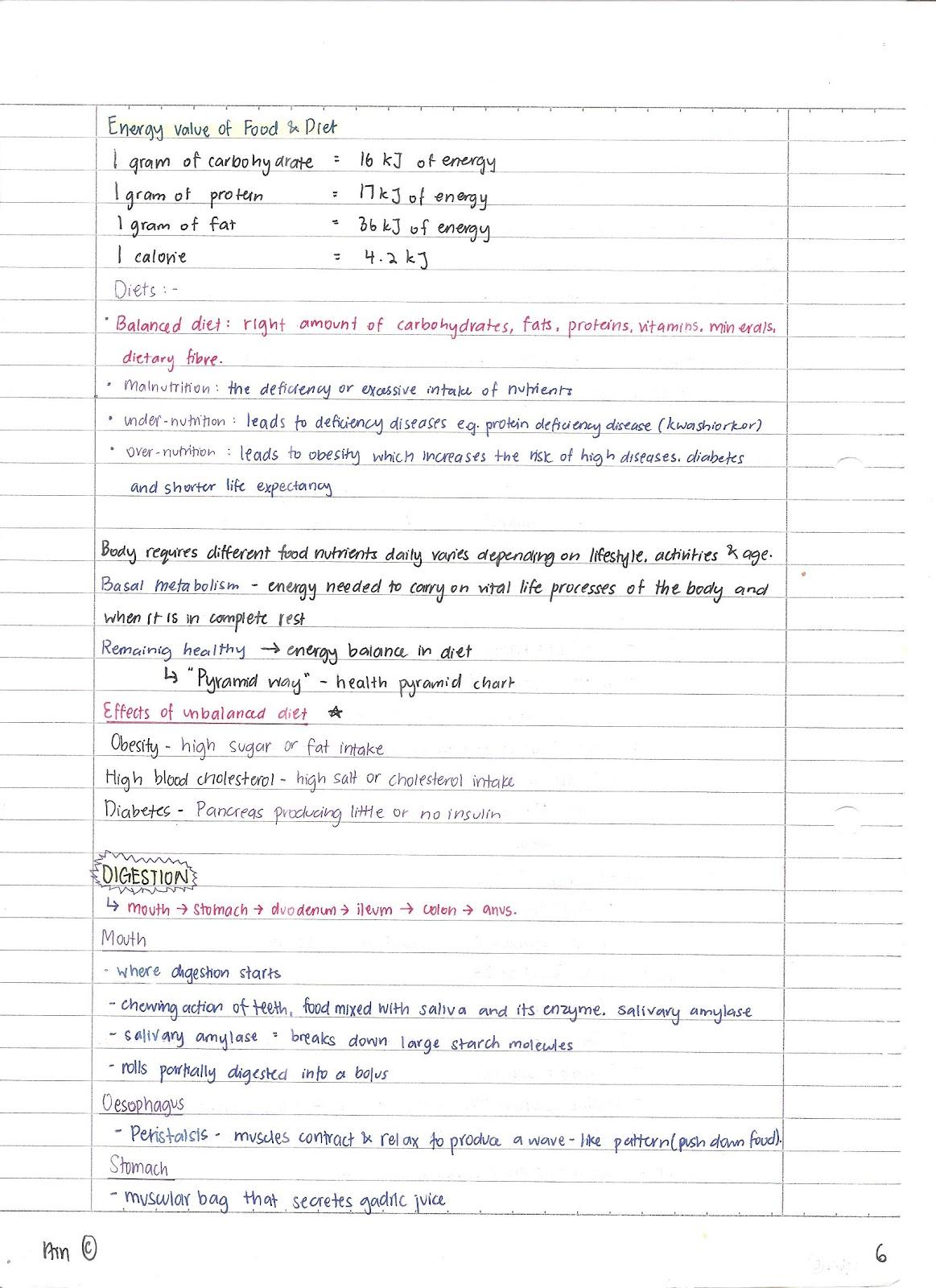 S1 03 Class Blog