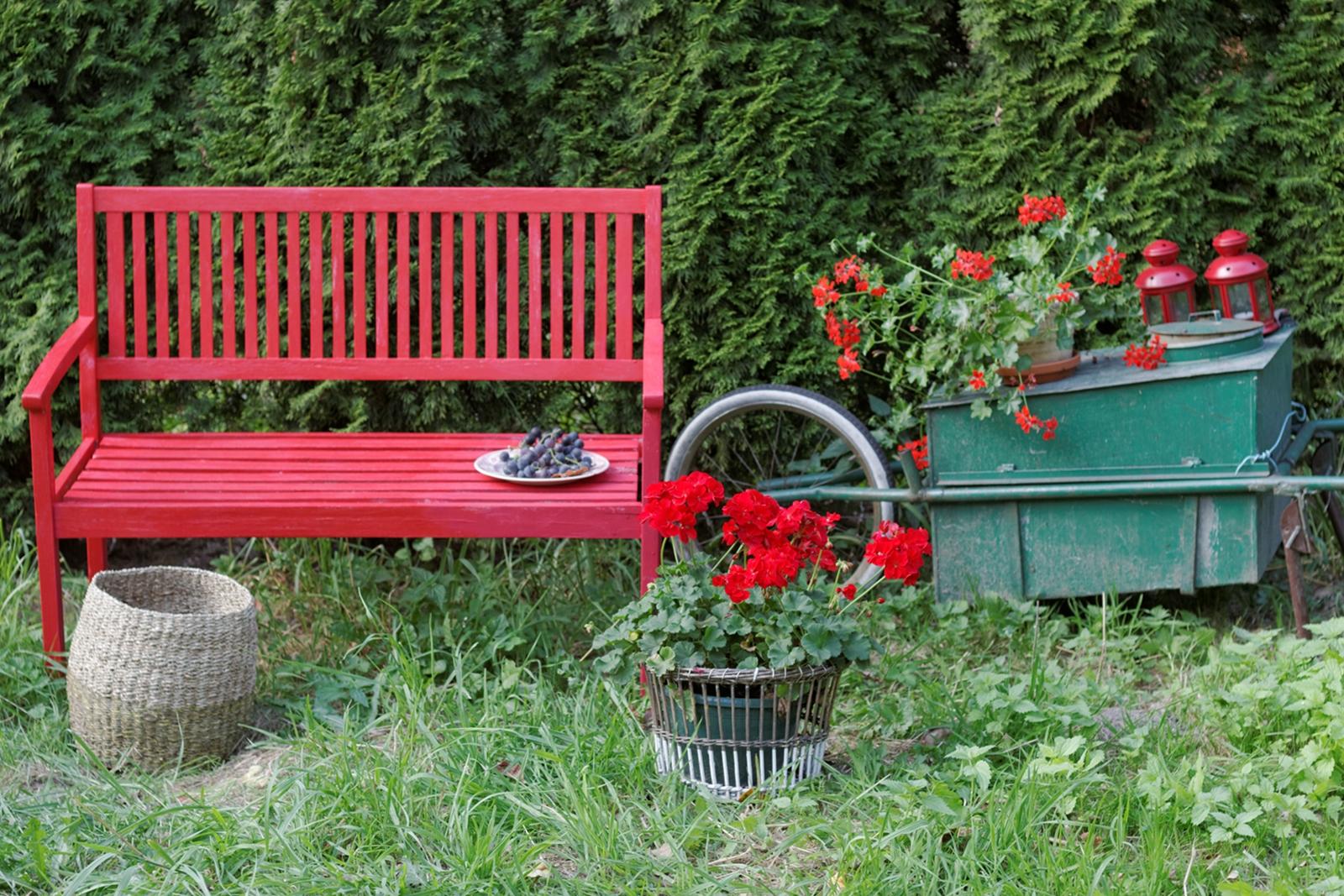 czerwona ławeczka