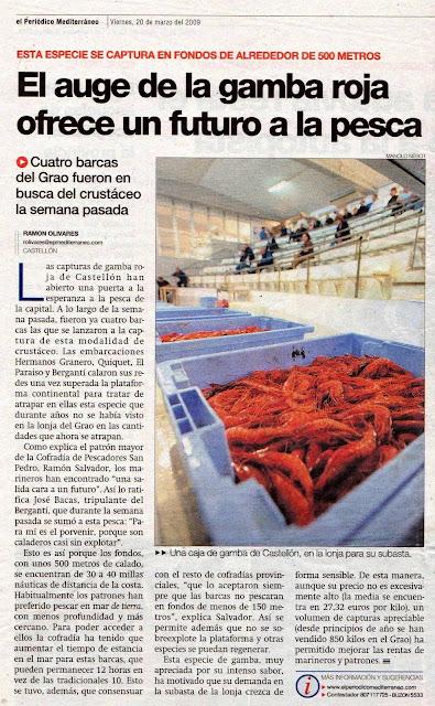 gamba%2Bgrao%2B001 - Discriminación de la Dirección General de Pesca Sostenible del Ministerio de Agricultura, Pesca y Alimentación